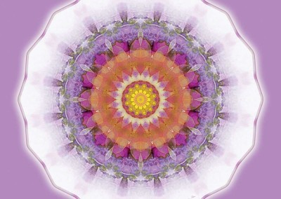 Mandalas for a New Earth 1