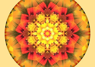 Mandalas for a New Earth 10