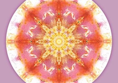 Mandalas for a New Earth 12