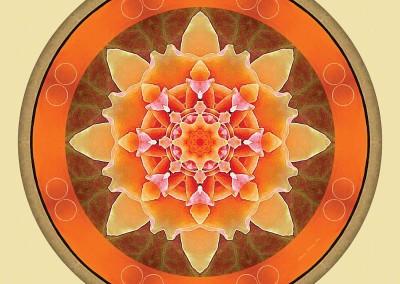 Mandalas for a New Earth 2