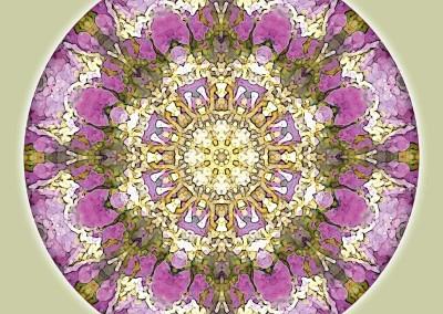 Mandalas for a New Earth 4