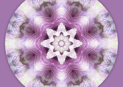 Mandalas for a New Earth 7