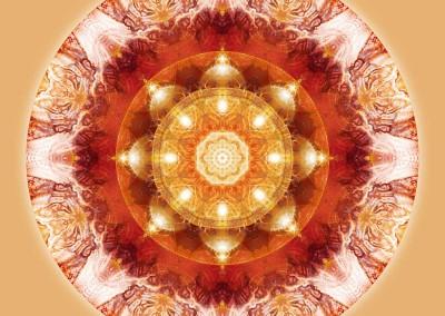 Mandalas for a New Earth 8