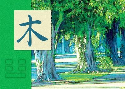 Feng Shui Wood