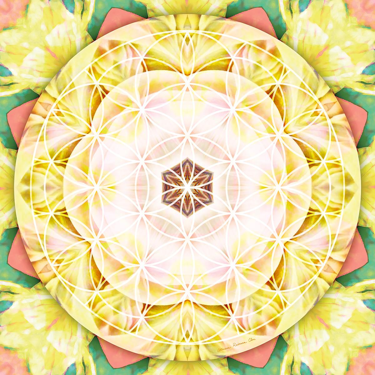 The Visionary Mandalas of Atmara Rebecca Cloe