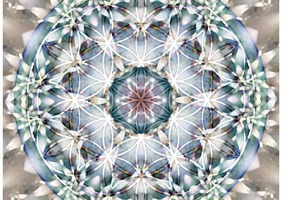 Flower of Life Mandala 1