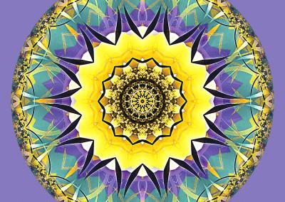 Mandalas of Healing and Awakening 5