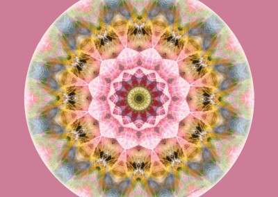 Mandalas from the Heart of Transformation 1
