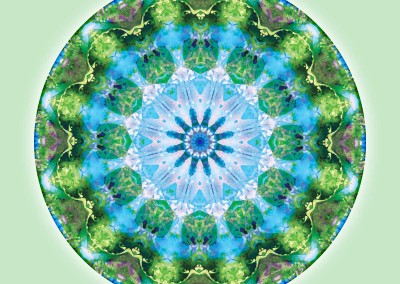 Mandalas from the Heart of Transformation 6