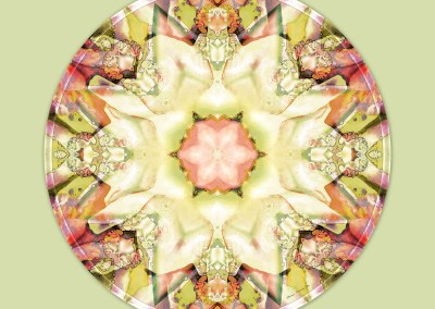 Mandalas from the Heart of Truth 5