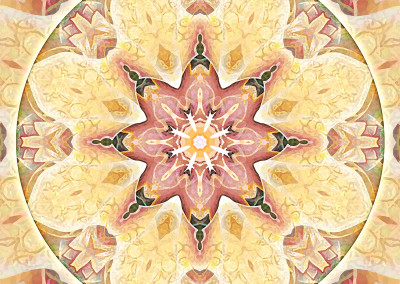 Mandalas for Times of Transition 1