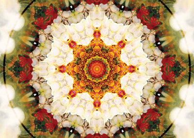 Mandalas from the Heart of Freedom 16