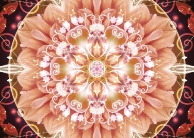 Mandalas from the Heart of Freedom 2