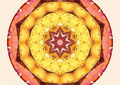 Mandalas of Deep Trust 7