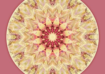 Mandalas from the Heart of Peace 2