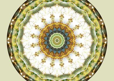 Mandalas from the Heart of Peace 5