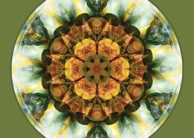 Mandalas from the Heart of Peace 9