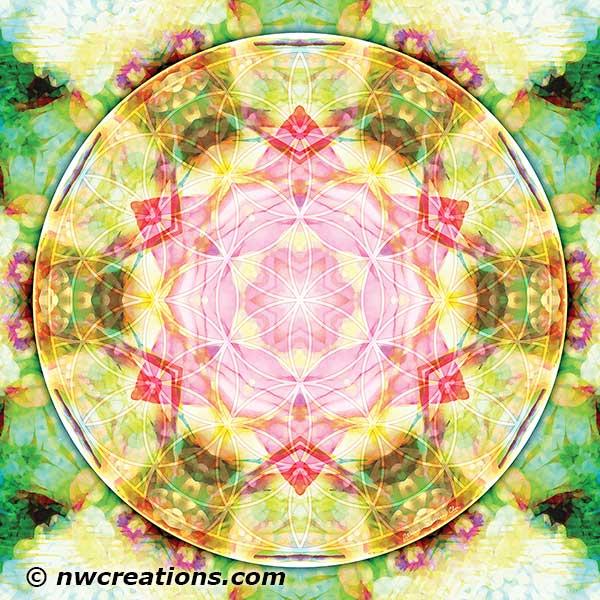 Flower of Life Mandala 17