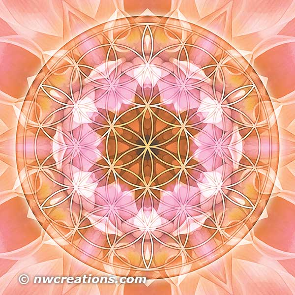 Flower of Life Mandala 18