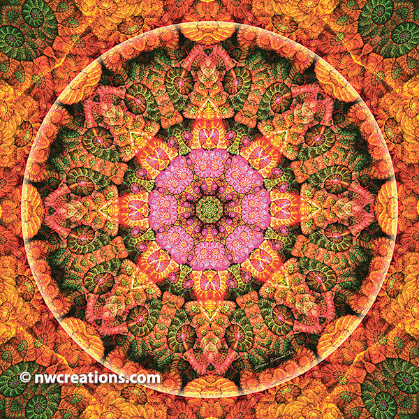 Mandalas of Forgiveness and Release 21