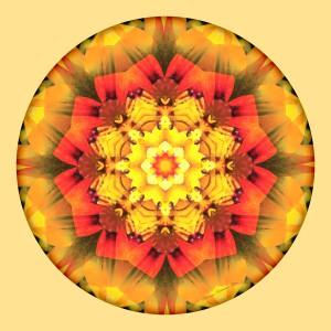 Mandalas for a New Earth, No. 10