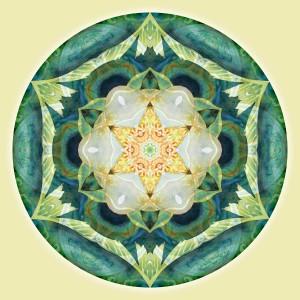 Mandalas for a New Earth 3