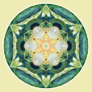 Mandalas for a New Earth, No. 3