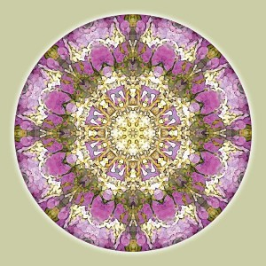 Mandalas for a New Earth 4