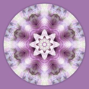 Mandalas for a New Earth, No. 7