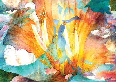 Floral Abstract 24