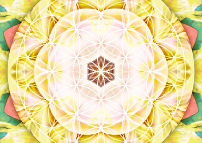Flower of Life Mandala 7