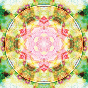 Flower of Life Mandala 17