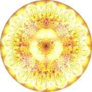 New World Creations Logo