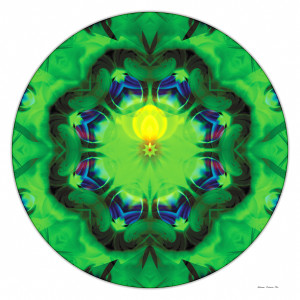 Mandalas of Healing and Awakening 3