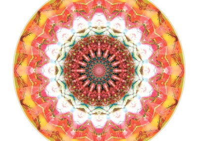Mandalas from the Heart of Surrender 1