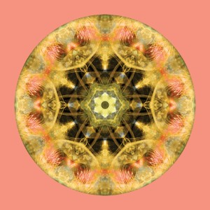 Mandalas from the Heart of Transformation 4