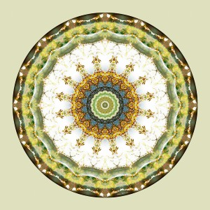 Mandalas from the Heart of Peace 5