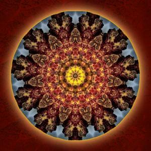 depth of wonder by Sue O'Kieffe