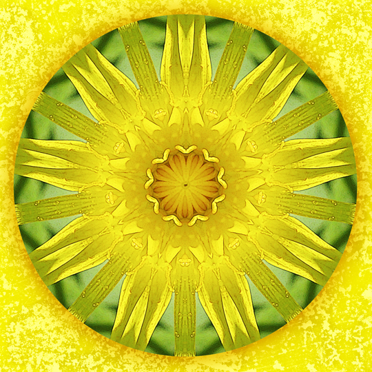 summer blessing mandala by Sue O'Kieffe