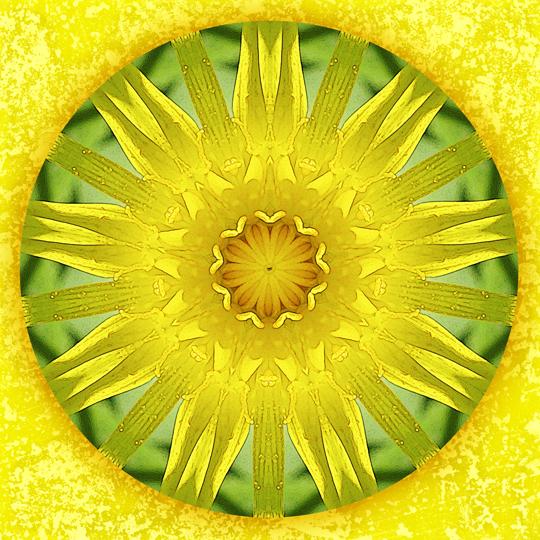 summer blessing mandala by Sue O'Kieffe