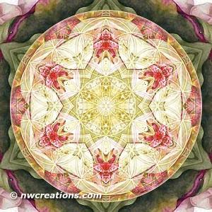 Flower of Life Mandala 6