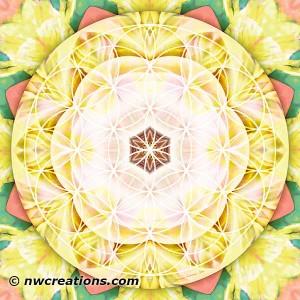 Flower of Life Mandala 7