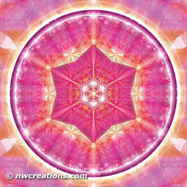 Flower of Life Mandala 9