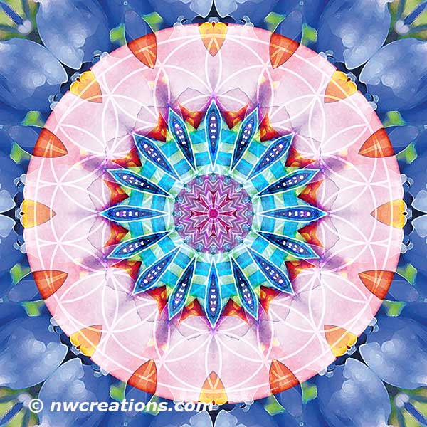 Flower of Life Mandala 12