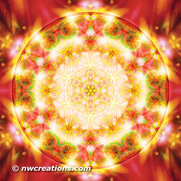 Flower of Life Mandala 15