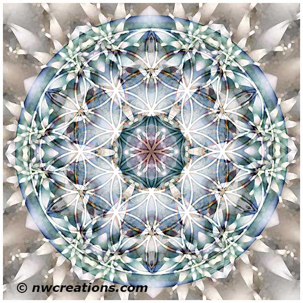 Flower of Life Mandala 1