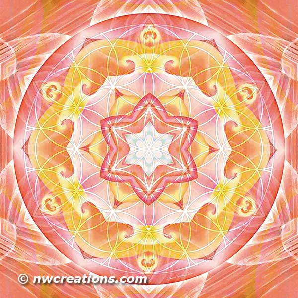 Flower of Life Mandala 20