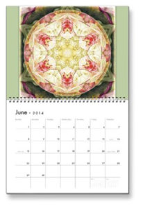 June Flower of Life Calendar