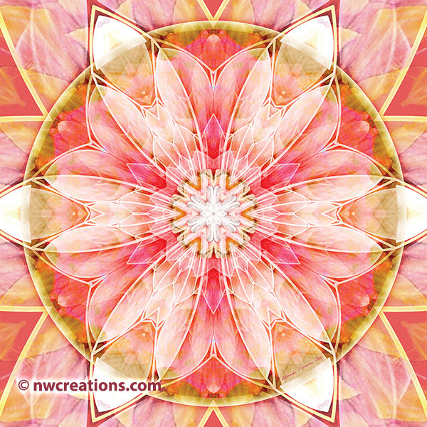 Mandalas of Forgiveness and Release 10