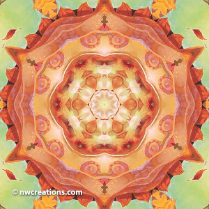 Mandalas of Forgiveness and Release 12